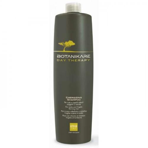 Alter Ego Italy Botanikare Energizing shampoo 1000 mL